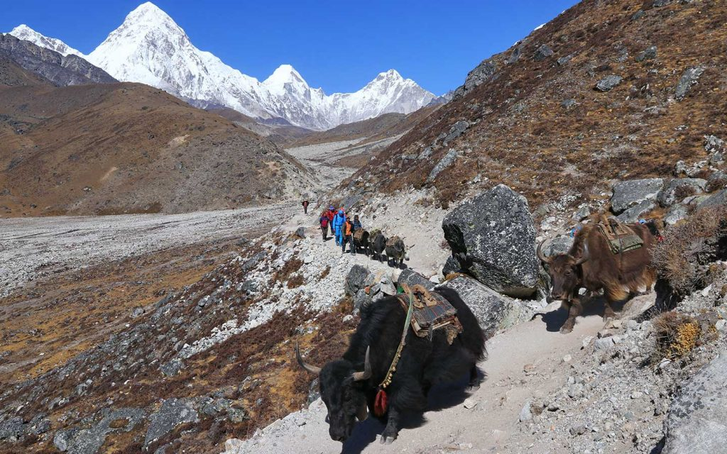 Dingboche to Lobuche